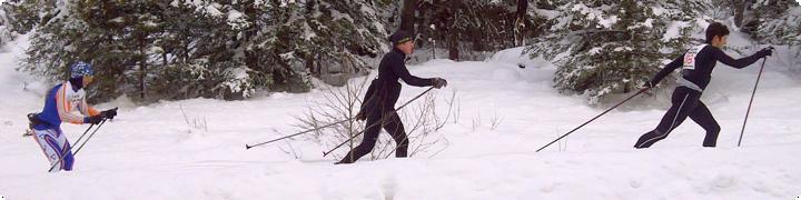 skierheader.png
